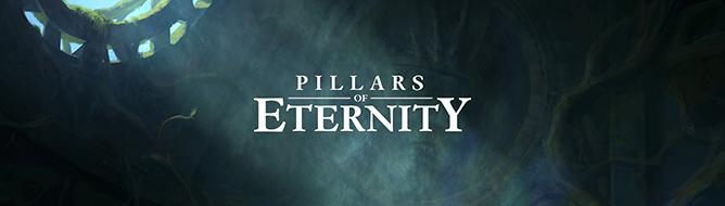 Photo of Pillars of Eternity выйдет на консолях