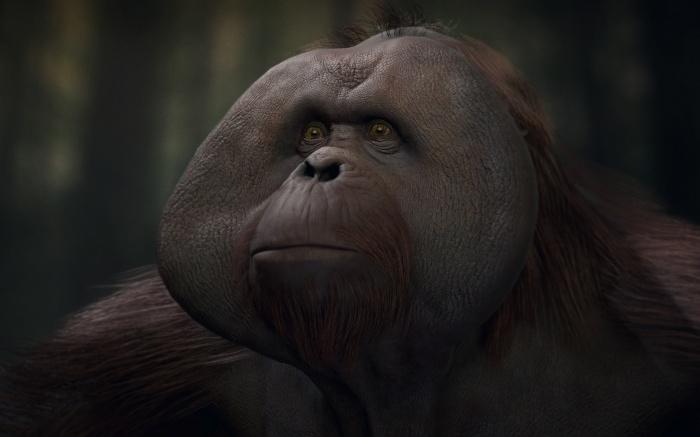 Photo of Пример непростого выбора в Planet of the Apes: Last Frontier