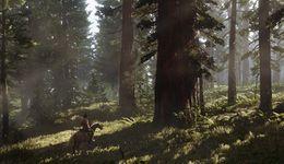 Photo of Президент Take-Two: В долгосрочной перспективе продажи игр будут полностью цифровыми