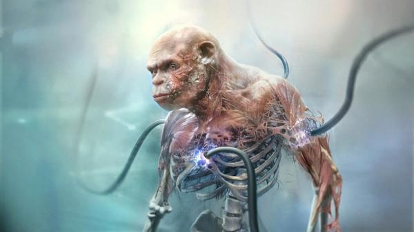 Производство жизни — новые концепт-арты Beyond Good and Evil 20